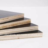 La película negra impermeable hizo frente a la madera contrachapada/a la madera contrachapada Shuttering de la construcción 1220 x 2440 x 18 milímetros