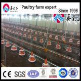 Ферма птицы куриные принадлежности для кормления бройлерных поддона пятискоростной приемной камеры
