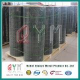 Le fil de fer de Qym a soudé le treillis métallique soudé par maille de grand dos de treillis métallique