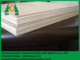 Tarjeta de madera de la tarjeta de Shutering de la tarjeta de la madera contrachapada
