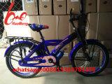 2017new車輪のカードまたはパキスタンの自転車が付いているモデル子供の自転車