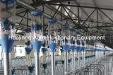 現代ブタまたはブタの農場によってカスタマイズされる高品質挿入システム養豚装置