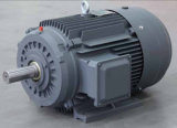 Ie3 Iron High Efficiency WS Motor 1.5HP 1.1kw 6p