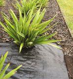 Contrôle des mauvaises herbes tissu PP tissés / Tissu d'aménagement paysager