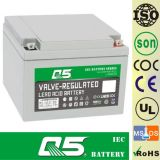 12V24AH, può personalizzare 20AH, 26AH, 28AH; Batteria di potere di memoria; UPS; Caratteri per secondo; ENV; ECO; Batteria del AGM del Profondo-Ciclo; Batteria di VRLA; Batteria al piombo sigillata