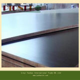 Cheap Shuttering Plywood. Poplar gold Hardwood Core Film Faced Plywood