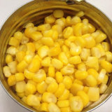 Le meilleur grain en boîte de vente de maïs dans le prix bon marché