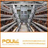 Jaulas Pollos Ponedoras 건전지 가금은 층 집을%s 닭 계란 부화기를 감금한다