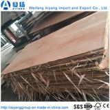 E0/E1/E2 Class Mr Okoume contreplaqué de bois de placage de colle pour meubles