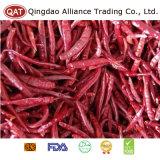 Nova Colheita de pimenta seca Vermelha Chinesa
