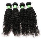Preço grossista Kinky Afro Curly Remy Cabelo Virgem Brasileira