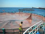 Cage de flottement de HDPE de poissons de cage en nylon de réseau pour des poissons