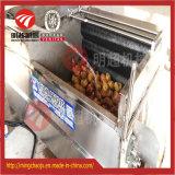 Lavagem automática do vegetal de raiz e arruela do estilo da escova de Peelingmachine