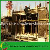 Madera contrachapada de madera de la cara de la película de Concret de construcción del material de la tarjeta impermeable de Shutterring