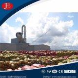 30 T/H Geheel Aardappelzetmeel die de Lijn van Machines in Indonesië maken