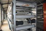 Système complètement automatique de matériel de cage de poulette de ferme avicole (bâti de H)