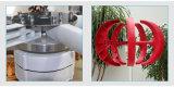 Mittellinien-Wind-Turbine Wechselstrom-24V 300W Europa heiße verkaufende vertikale