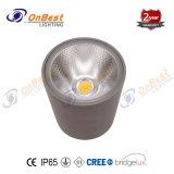 LED 12W LED lámpara de techo