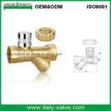 Europäische Qualitätsmessingc$y-stainer-Ventil (AV5007)