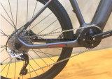 كربون لين درّاجة كهربائيّة من [ييس] [إ] درّاجة يجعل في الصين