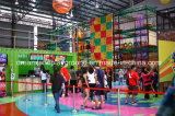 [توب قوليتي] عمليّة بيع حارّ داخليّة [ترمبولين] متنزّه لعبة مركز لأنّ أطفال