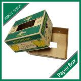 [5بلي] يعبّئ ثمرة كرز مور علبة صندوق