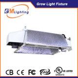 특허가 주어진 수경법 CMH는 온실을%s 끝난 Dimmable 밸러스트 630W 두 배에 가볍게 증가한다