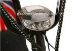 리튬을%s 가진 질 800W/1000W 도시 코코야자 Harley 전기 스쿠터