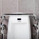 Нержавеющая сталь служила фланцем штанги самосхвата Urinal туалета для инвалид
