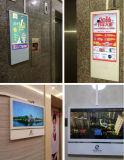 プレーヤーを広告するエレベーターのための22インチLCDのビデオプレーヤーの表示デジタル表記