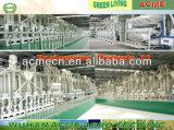 100 Tpd automatische Reismühle-Maschinen-komplette Reismühle-Pflanze