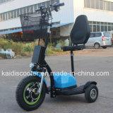 3 Rad-elektrischer Fahrrad-Naben-Bewegungsmobilitäts-Roller für behindertes