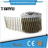 Pálete CN55 que faz o Nailer pneumático da bobina