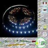 신식 S 유형 SMD 5050 LED 지구 DC12V