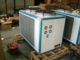 Élément se condensant de la HP 25 pour l'installation d'entrepôts frigorifiques, élément se condensant