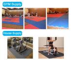 stuoie di puzzle utilizzate judo all'ingrosso del Taekwondo Tatami di arti marziali di 1mx1m EVA