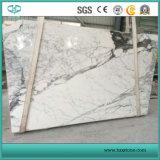Linda e boa qualidade laje de mármore branco de qualidade superior Calacata