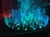 다채로운 빛을%s 가진 정원 음악 춤 분수