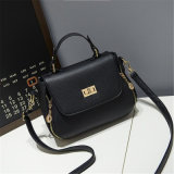 2017 New Fashion Satchel / Shoulder Bags / Mini Bag. (GB # 980)