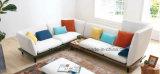 لطيفة قطاعيّ أريكة مجموعة مع تصميم جميلة