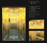 에너지 절약 유형 전송자 엘리베이터