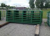 Ворота в сельских районах фермы петли дверцы гальванизированные фермы ворота