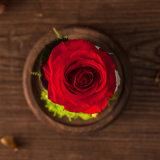 Fiore Handmade per il regalo di compleanno della decorazione di festa