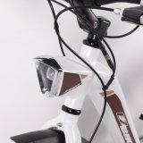 Bici eléctrica de la ciudad con estilo de la ayuda del pedal con el neumático de Kenda
