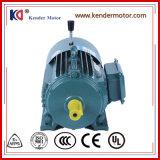 380V 50Hz de Elektrische Motor van de Rem met In drie stadia