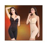 De nieuwe High-End van de Douane van het Concept Buitensporige Korsetten van het Ondergoed van Bodysulpting van het Damesslipje van de Bustehouder