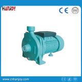 Individu amorçant le CPM centrifuge de pompe à eau