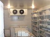 찬 룸/실험실 룸/Pharmarcy 저장실을 정리하십시오