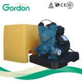 Inländische elektrische kupferner Draht-selbstansaugende Förderpumpe mit Plastikkasten