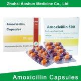 De Doos van de Verpakking van de amoxiciline